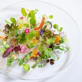 敬愛する生産者の紹介を兼ね、素材の良さをダイレクトに伝える『アルチザン野菜』
