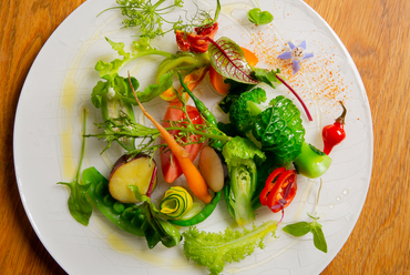 近郊でとれたて無農薬の野菜サラダ