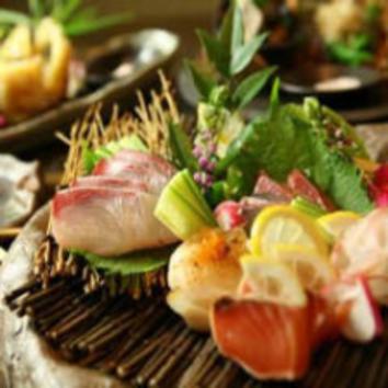 【お料理のみ】お造り盛り・旬野菜を使ったお料理充実