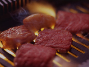 肉が素早く炙れる強い火力のロースター