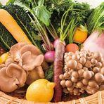 季節の湘南地野菜を沢山使ったヘルシーで健康的な料理をどうぞ。