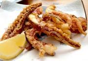 ・秘伝ソース、ユーリンチー ・上海蒸し鶏、紹興酒ソース ・自家製チャーシュー ・螺貝とパクチー合え ・クラゲ(辛み6塩味) ・いかの下足揚げ ・ゴマたっぷりバンバンジー