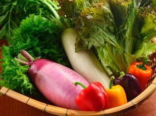 地産地消をモットーに、新鮮な「地野菜」をたっぷりとどうぞ