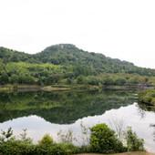 鏡山公園の四季折々の自然の美しさが味わえる、くつろぎの空間