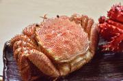 北海道を代表する高級食材といえば毛がに。濃厚な旨みとかに味噌を存分に味わえます。
