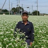 当店の蕎麦を一年分栽培してくれています。栽培している蕎麦は、良品質の茨城産ブランド蕎麦『常陸秋蕎麦』(ひたちあきそば)