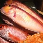 市場のものだけではなく、漁師さんから直送の鮮魚も登場します