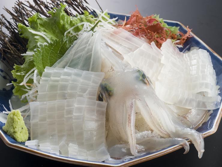 「イカ 刺身」の画像検索結果