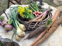 山梨の五味さんが育てた無農薬野菜をたっぷり味わえます。