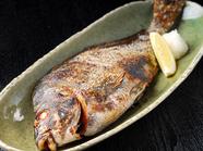 タカノハ鯛【塩焼】