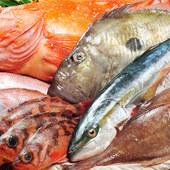 旬の日替わりメニュー。いつも新鮮なお魚を用意しております。