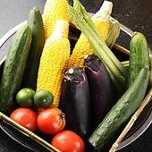 新鮮野菜を取り揃えております
