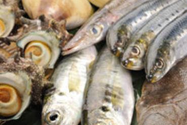 ☆ 九十九里自慢の海鮮料理 ☆