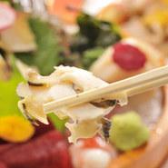 7月からの今の時期、西貝が旬!千葉県でも西貝を扱うお店は多くありません、こうすけで食してみては?