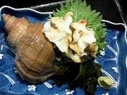 旬の貝類もいろいろ入荷しております。つぶ貝、赤貝etc… たいら貝、サザエ、とり貝など・・・