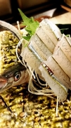 こだわって仕入れた新鮮な旬の魚。とりあえず「刺身」から試してみて下さい。