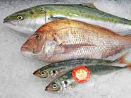※その他 その日仕入れた鮮魚を ご要望に沿って調理致します。