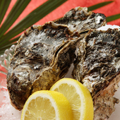 旬の海鮮料理はその日のお勧め!