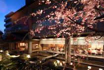 桜を眺めての歓送迎会はいかがですか