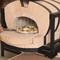 ピザを焼き上げるのは、能登の珪藻土を使用した本格的な窯