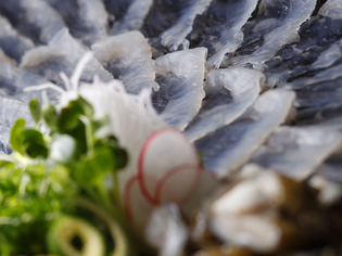 看板料理は地元高知でも珍しい「うつぼの刺身」