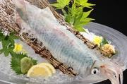 ゲソは天ぷらで召し上がれ