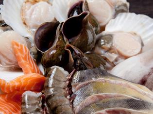 新鮮さにこだわった海の幸。美味しさをダイレクトに味わえます