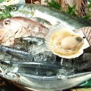 市場より毎日取り寄せる鮮魚、時期により提供するネタが変わってまいります。