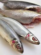 魚介はもちろん、肉類も地物にこだわりが
