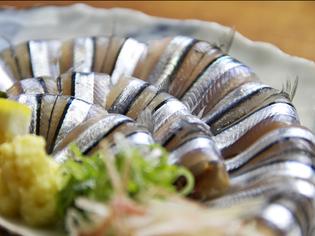 初夏においしい、おすすめの旬魚『きびなごの刺身』