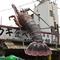 松山市街のど真ん中で新鮮魚介を堪能。巨大なエビの看板が目印