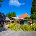 近くの《生駒高原》の『菜の花』『ポピー』がきれいです。