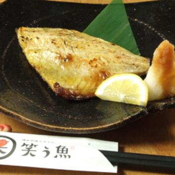 【笑う魚おすすめコース】全8品 4000円(2H[飲放]付)