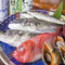 魚の宝庫、浜松で獲れた新鮮な魚介類
