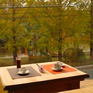 月替わりのランチプレートは1100円でメイン・デザートが選べます。 窓の外は公園の緑が広がり ほっと一息をつけるゆったりとした無垢のウッドテーブルが 気持ちがいい。 素敵なひと時を!