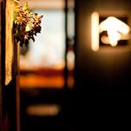 のれんをくぐり、入口から席までの長い回廊の壁や店内の7か所には、季節の花が飾られています。そこには来店するお客様へのおもてなしの心が込められています。