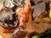 寿司活魚 こころ
