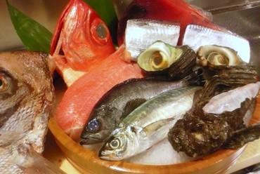活魚料理いろいろ