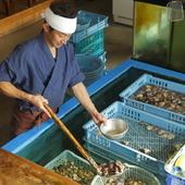 海を満喫!いけすから直接出される食材は海辺ならではの豪快さ。