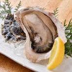 今が旬の岩牡蠣、濃厚クリーミーな牡蠣の旨味をご堪能できます。
