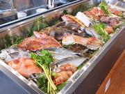 魚菜 富来助