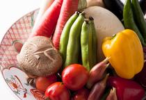 地元広島産の瑞々しい野菜。変わった食材が入ることもあります