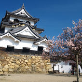 彦根城近く! 近江の味をご堪能下さい。