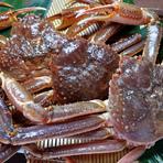 より良質なカニを提供できるよう。ズワイ、紅ズワイ、毛ガニ、タラバなど、多種にわたる素材を独自の手法で保存して、毎朝、注文を受ける前に調理します。