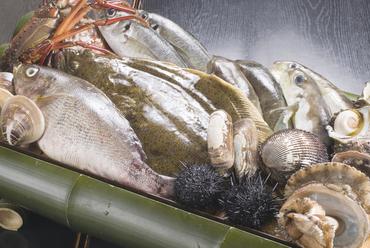 市場や漁師から仕入れる新鮮食材!!