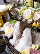 小鉢、刺身5点、魚介5種による海鮮炉端焼き、一品もの、巻きずしが付きます (画像は一例です)
