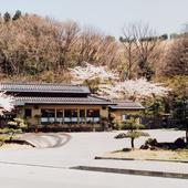 春は桜の名所です
