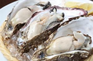 越野水産直送の厚岸産牡蠣