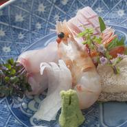 富山で水揚げされた旬の魚のお造り。日替わりでお楽しみいただけます。
