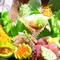 新鮮な魚介類、こだわりの食材を使った創作料理の数々